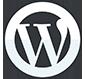 wordpress devlopment